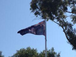 AASCF South Australia 2014 - 073