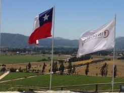 Vina del Mar, Chile 2014 - 332