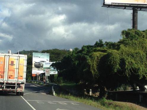 Costa Rica 2014 & More - 045