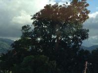 Costa Rica 2014 & More - 046