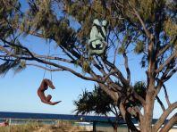Gold Coast 2015 - 142 of 608