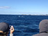 Gold Coast 2015 - 398 of 608