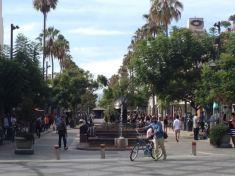 Los Angeles 2015 - 2 of 32