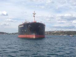 Sydney 2015 - 58 of 134