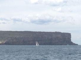 Sydney 2015 - 65 of 134