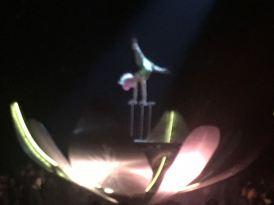 Cirque Sep7imo Dia - 3