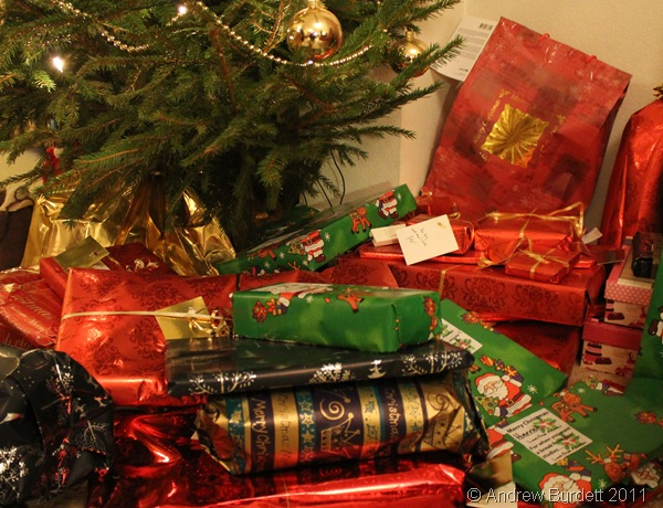 PRESENTS UNDER THE TREE_Gifts waiting to be given.