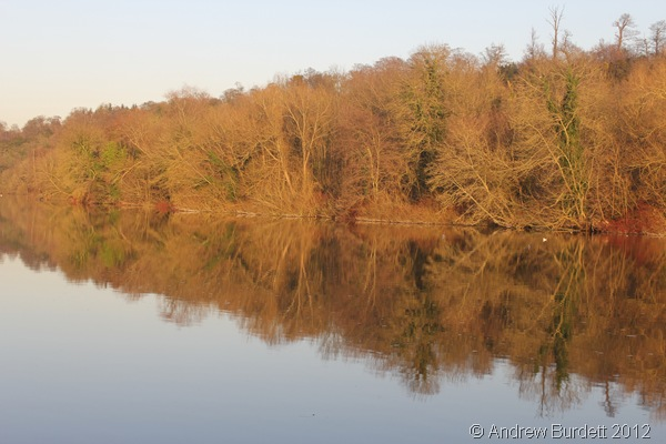 WINTER REFLECTIONS: The relatively still waters made for almost perfect reflections. (IMG_1816)