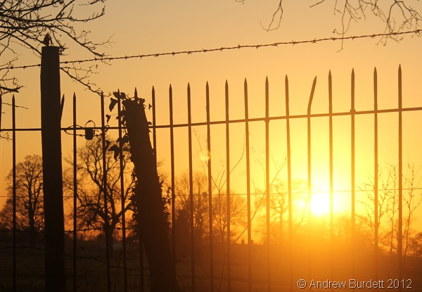 AND THEN SHALL YOUR LIGHT SHINE FORTH: The sun seen shining bright behind a fence. (IMG_1863)