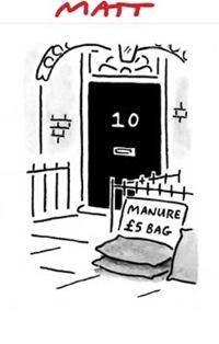 MATT CARTOON: Telegraph cartoonist Matt Pritchett's take on 'Horsegate'.