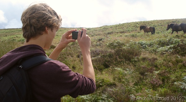 PICTURE PERFECT: Ed paused to admire some of the wild horses. (0246_DSC04218_ARB)