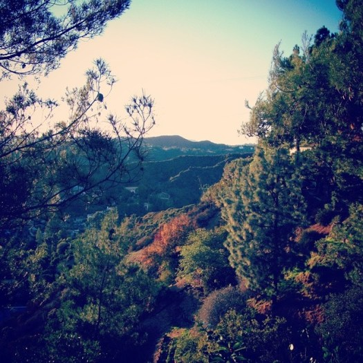 Surprise: no palm trees in sight :) #Mountains near #LosAngeles, #California