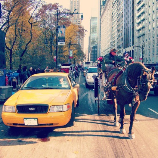 Which one would you choose? #NewYork #newyorkcity #NYC