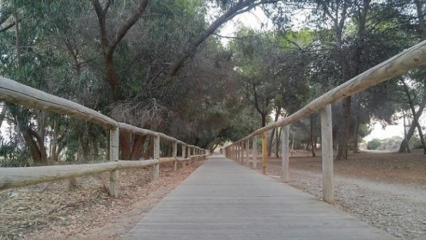 Wooden sidewalk near Salina de La Mata Torrevieja