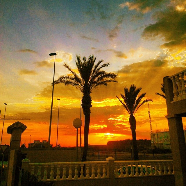 Sunsets and palm trees: there's no better view than that! June, 29, 2014