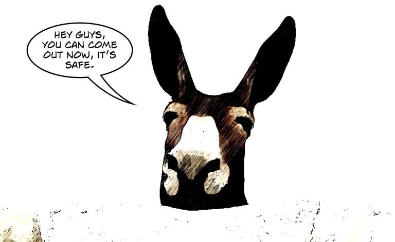 Farewell, Donkeyslayer