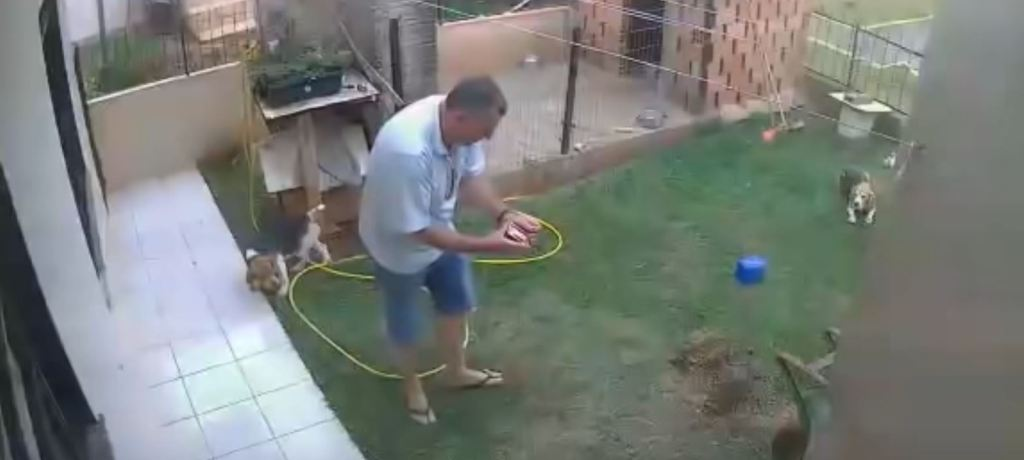 Best of Brazil: Guy Tries to Kill Cockroaches, and an Internet Legend is Born