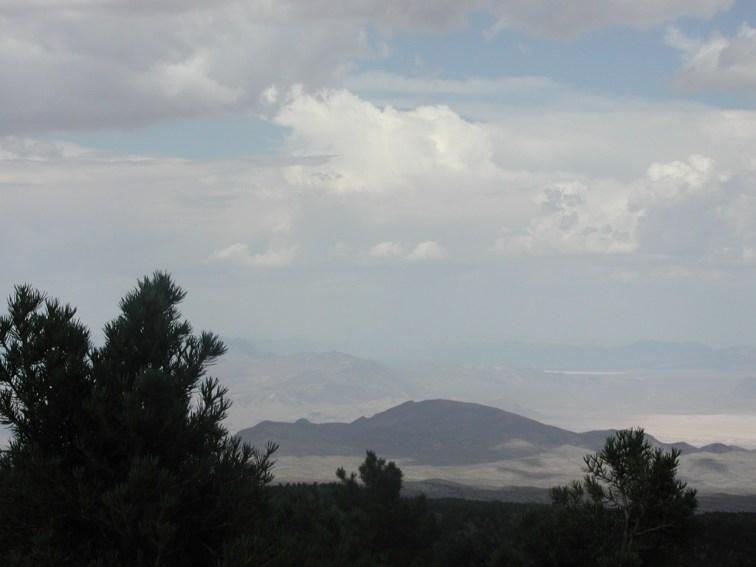 Mount Charleston 36