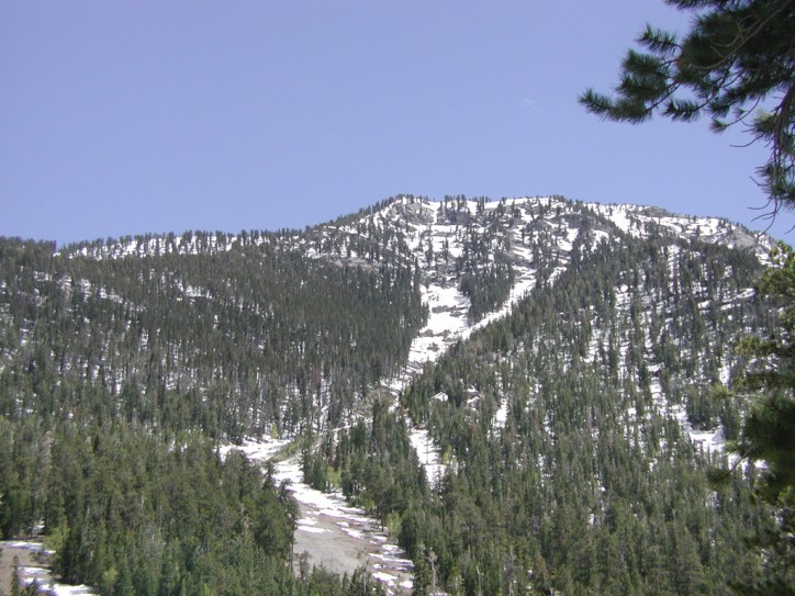 Mount Charleston 57