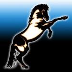 Horse Logo Concept