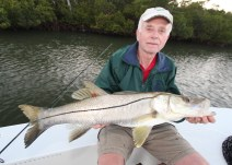 Sanibel Snook fishing