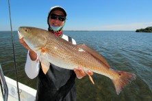 Pine Island Sound Redfish