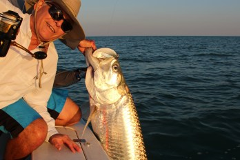 Sunset Tarpon (2)