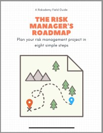 risk management PDF guide