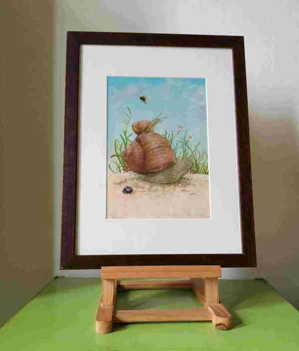 Framed drawing of two snails in a garden