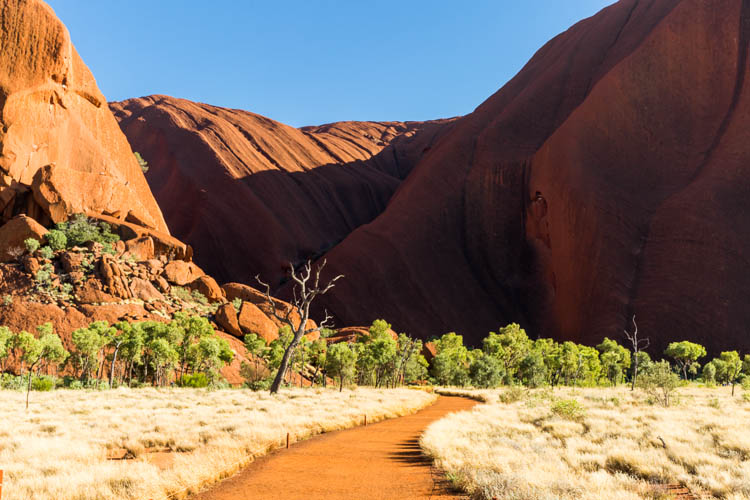 Image of walking track to the Mutitjulu Waterhole at Uluru