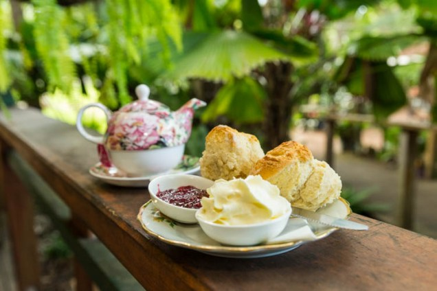 Image of scones, cream and jam with tea at Old Station Tea House