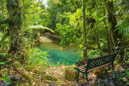 Seat overlooking clear waters of a rainforest creek in the Daintree