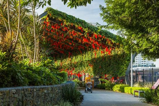 A woman with stroller walking under an arbour walkway laiden with flowers in bloom