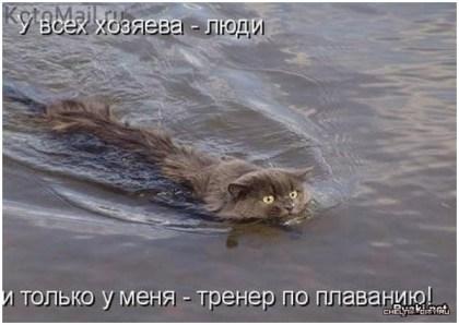 Хозяин-тренер по плаванию кота заставляет плавать