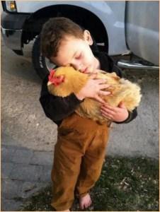 На фото мальчик с курицей