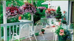 Дачная терраса в цветах