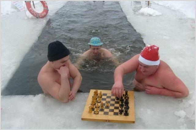 Картинка шахматы