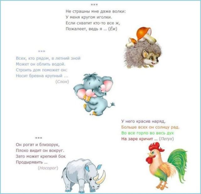 Загадки про животных