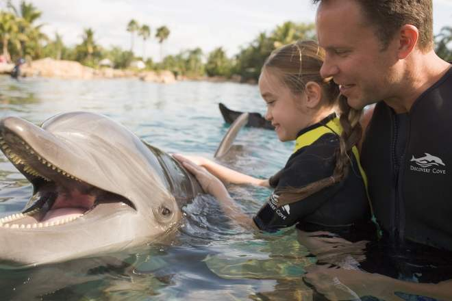 DC+Dolphin+Dad+and+Girl.jpg