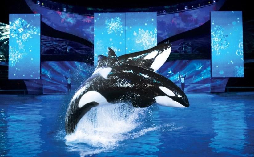 Celebrações de Natal no SeaWorld
