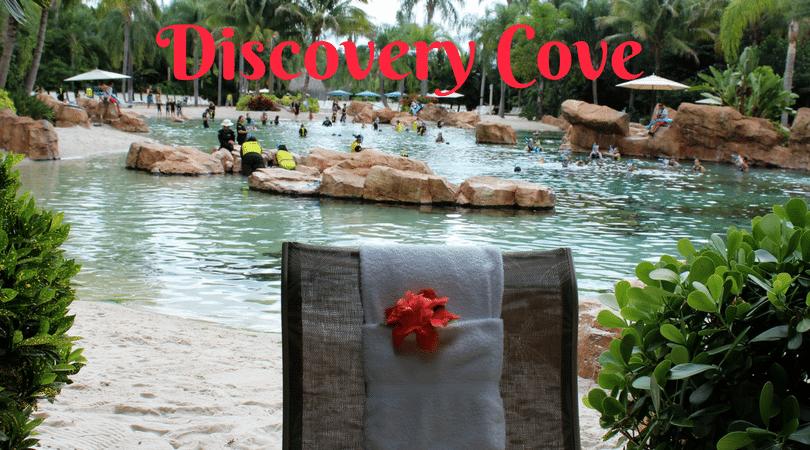 Tudo sobre o Discovery Cove