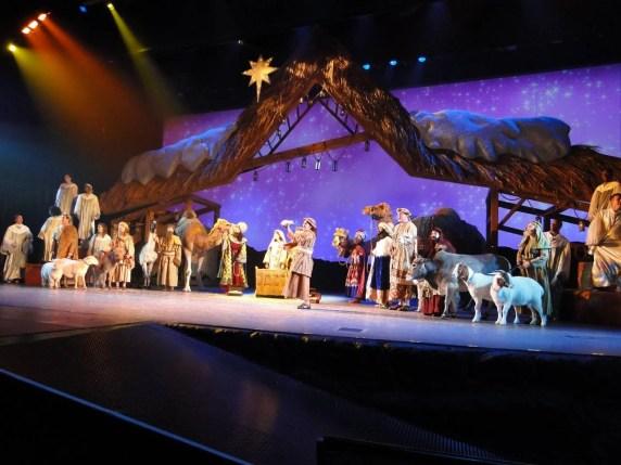 Natal em Orlando - O Wondrous Night - SeaWorld