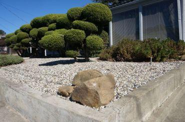 so oder anders - links ein üblicher Vorgarten, rechts einer in Blackhawk