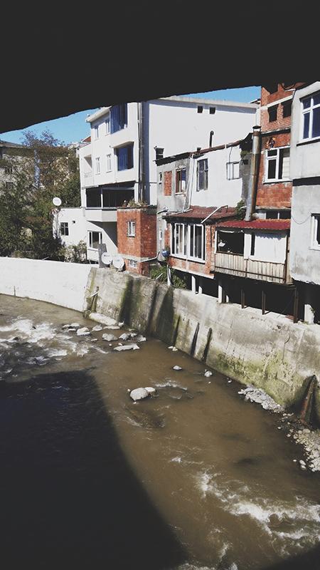 iz batumi v turciyu sarpi kemalpasaistanbul bazaar 13