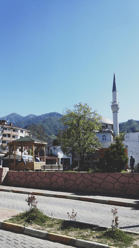 iz batumi v turciyu sarpi kemalpasaistanbul bazaar 4