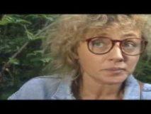 Ili kako vam drago (1993) domaći film gledaj online