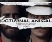 Nocturnal Animals (2016) online sa prevodom