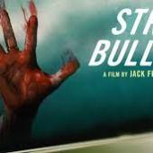 Stray Bullets (2016) online sa prevodom