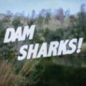 Dam Sharks (2016) online sa prevodom