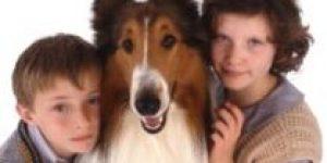 Lassie (2005) sinhronizovani dječiji film online